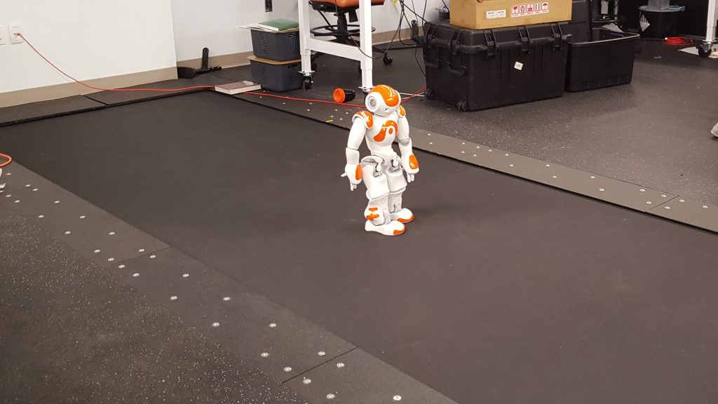 Cal Tech Robotics Treadmill